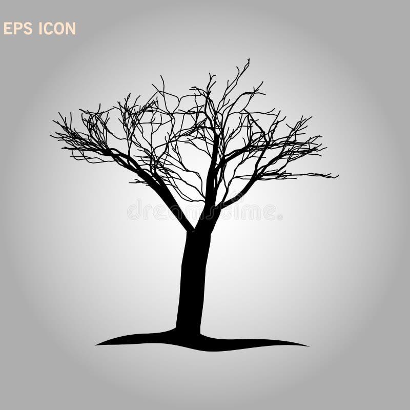 Architectonics del arce de Noruega La estructura de las ramas y del tronco de árbol Dibujo del vector del árbol en un fondo blanc stock de ilustración