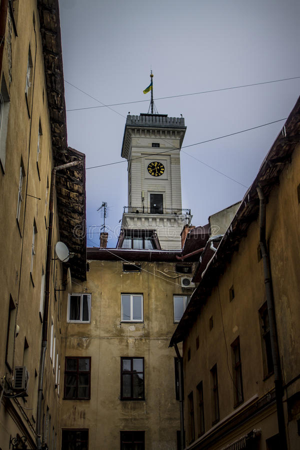 Architectura Januari 2017 Lviv stadshus arkivbild