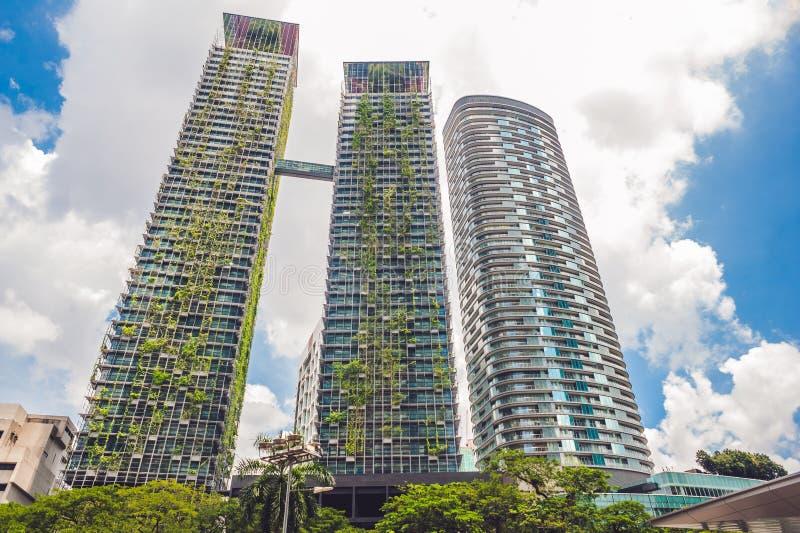 Architecture d 39 eco b timent vert de gratte ciel avec des for Vert urbain maison de ville