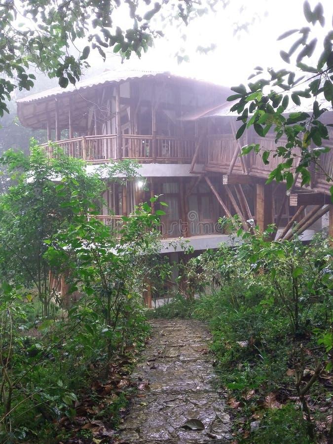 Architecture de maison de jungle que la route s'est rapportée au président de gauche de partie concernant le combat de libération image stock