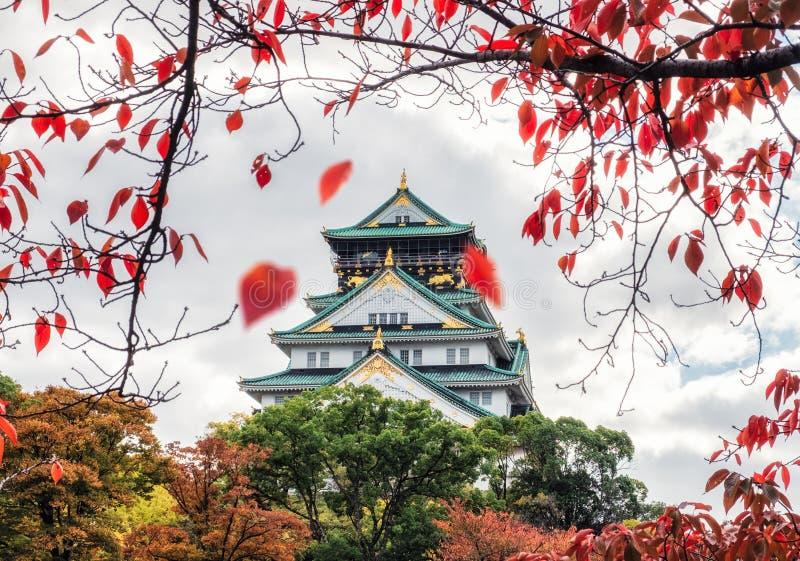 Architektur-Osaka-Schloss mit den roten Blättern, die in Herbstpark in Kyoto fallen stockfotografie