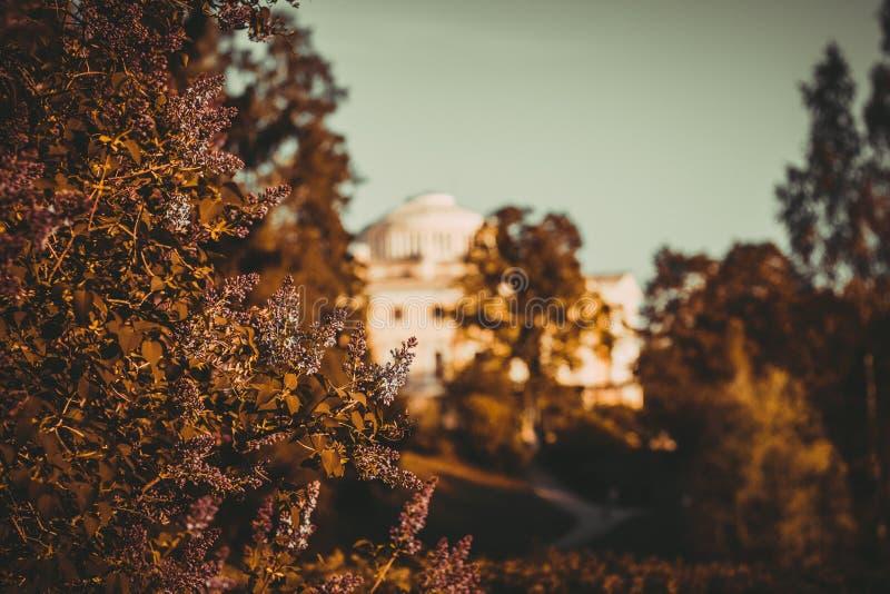 Architektura i natura w Pavlovsk parku zdjęcia royalty free