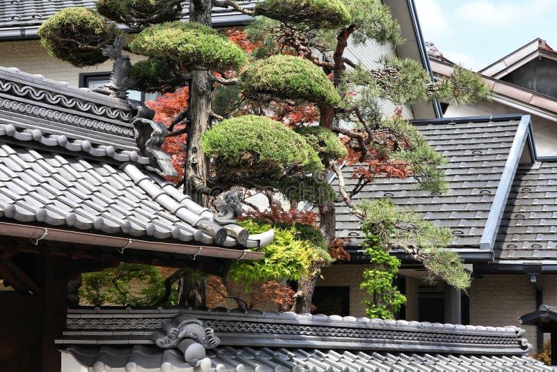 Architektura w Japonia zdjęcia royalty free