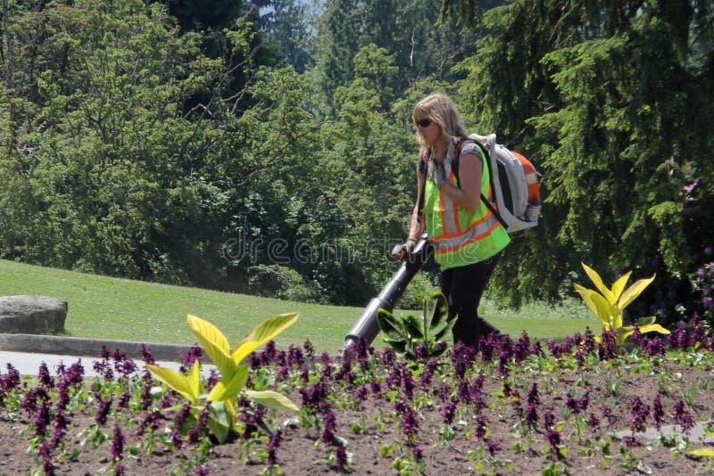 Architetto di giardini Operating Leaf Blower fotografia stock