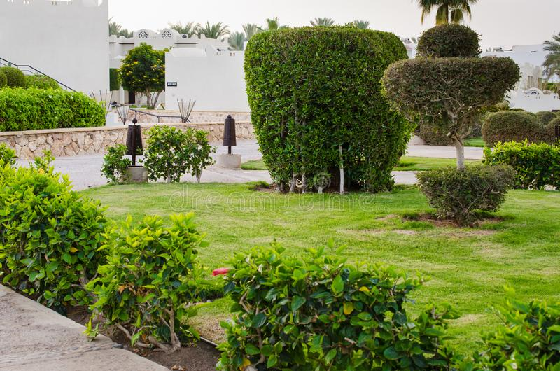 Architettura del pæsaggio al territori in Sharm el-Sheikh, Egitto dell'hotel fotografia stock libera da diritti