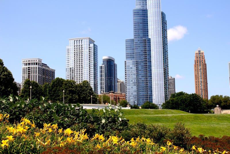 Architettura di Chicago con i fiori fotografia stock libera da diritti