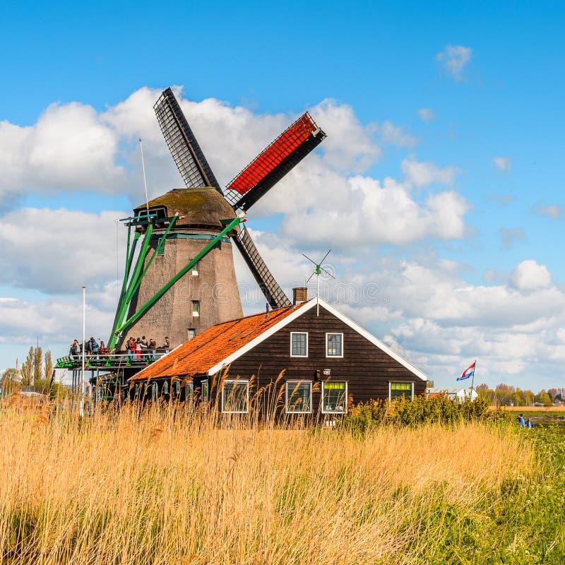 Architettura di zaanse shaans paesi bassi fotografia for Architettura olandese