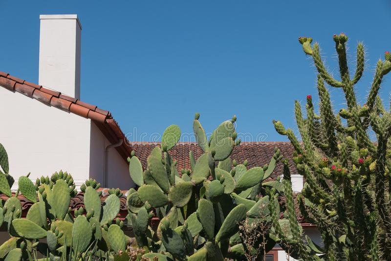 Architettura sudoccidentale, abbellimento del cactus fotografie stock