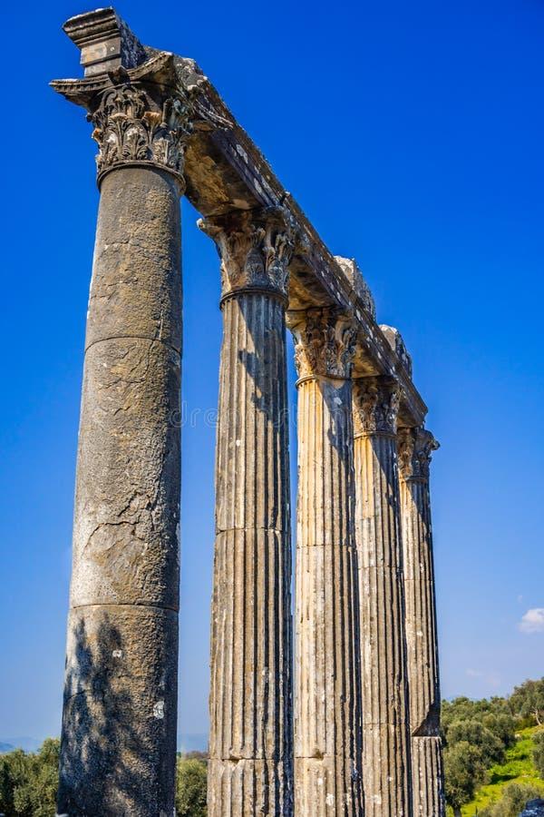 Architraw i szpaltowy szczegół od Euromos, Euromus Antycznego miasta - Świątynia Zeus Lepsinos obrazy stock