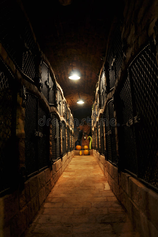 Archivo del vino imagen de archivo