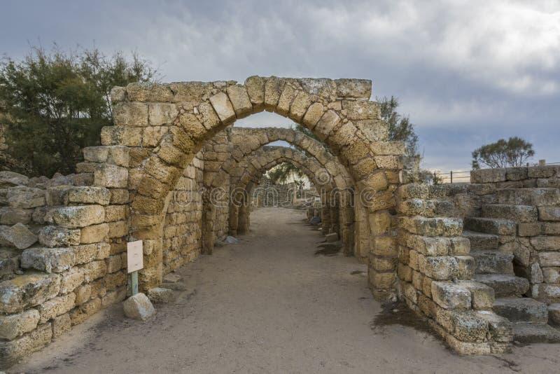 Archs da mangueira antiga fotografia de stock royalty free