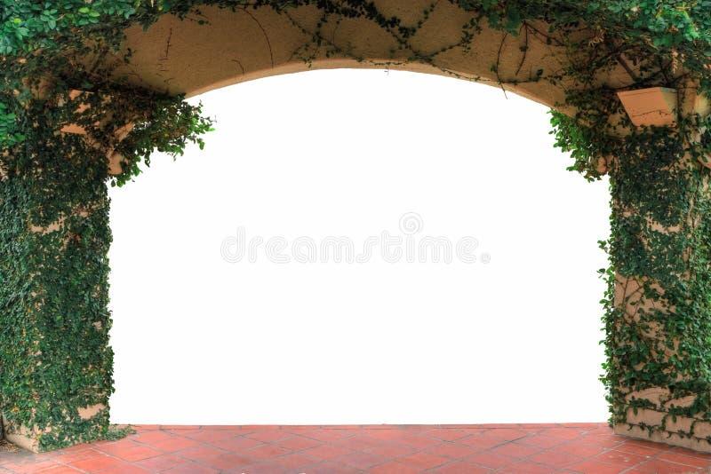 Archway circondato dalla vite fotografia stock
