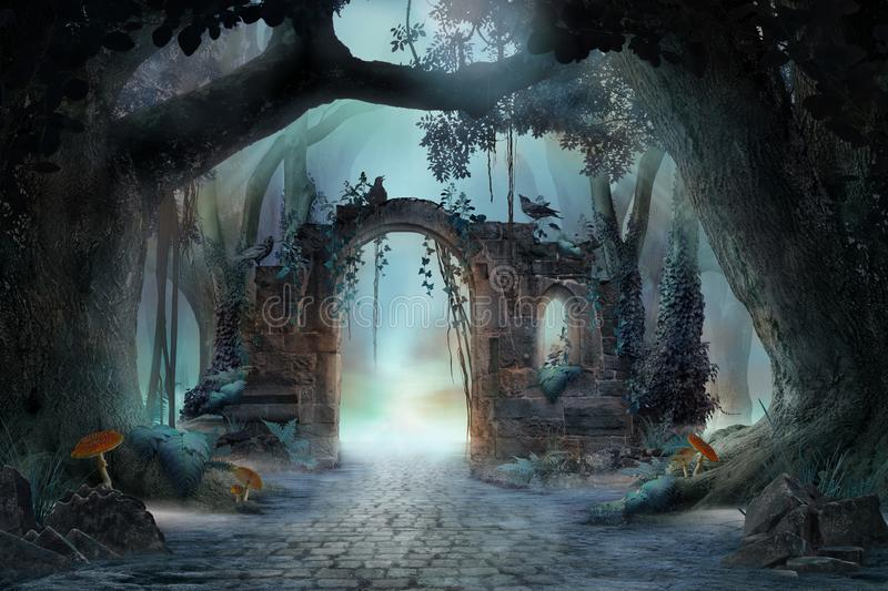 Archway in an enchanted fairy forest landscape, misty dark mood, stock images