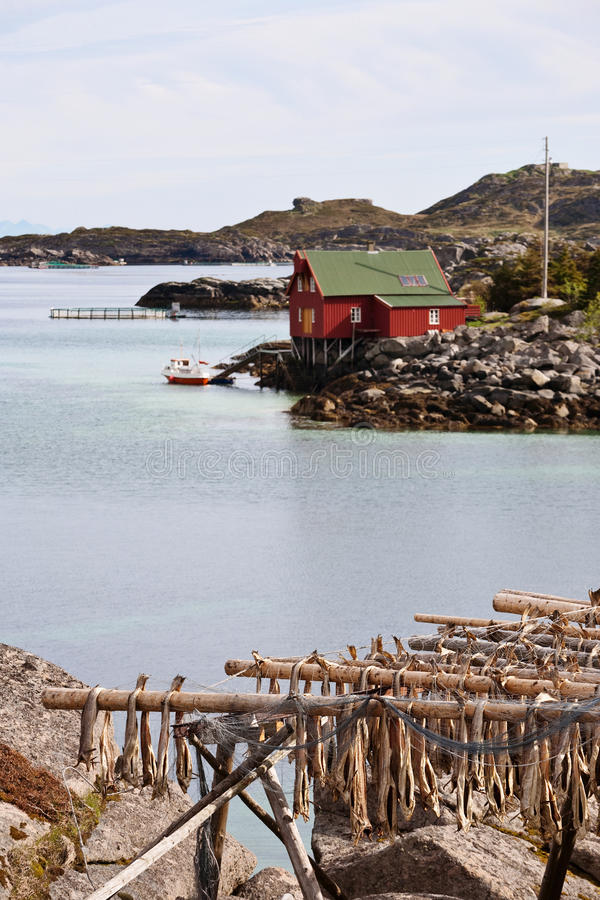 Arcipelago di Lofoten fotografia stock