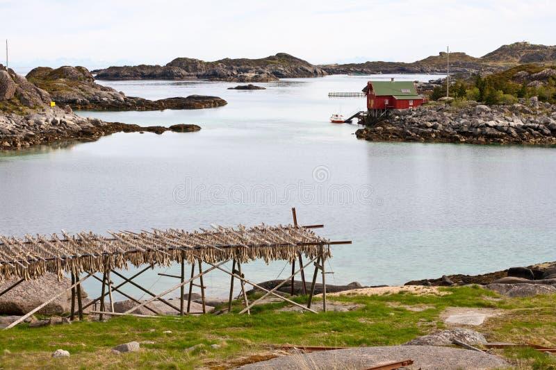 Arcipelago di Lofoten immagine stock libera da diritti