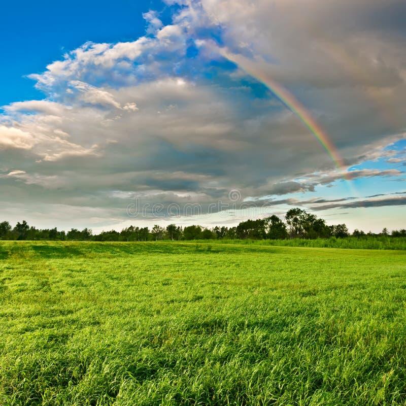 Arco-íris acima da floresta imagens de stock