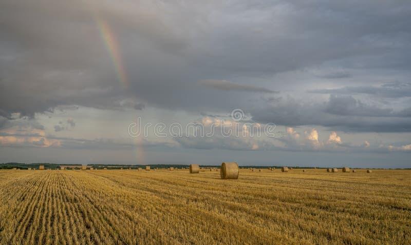 Arco-íris colorido bonito sobre um campo de trigo de inclinação com grandes rolos da palha foto de stock