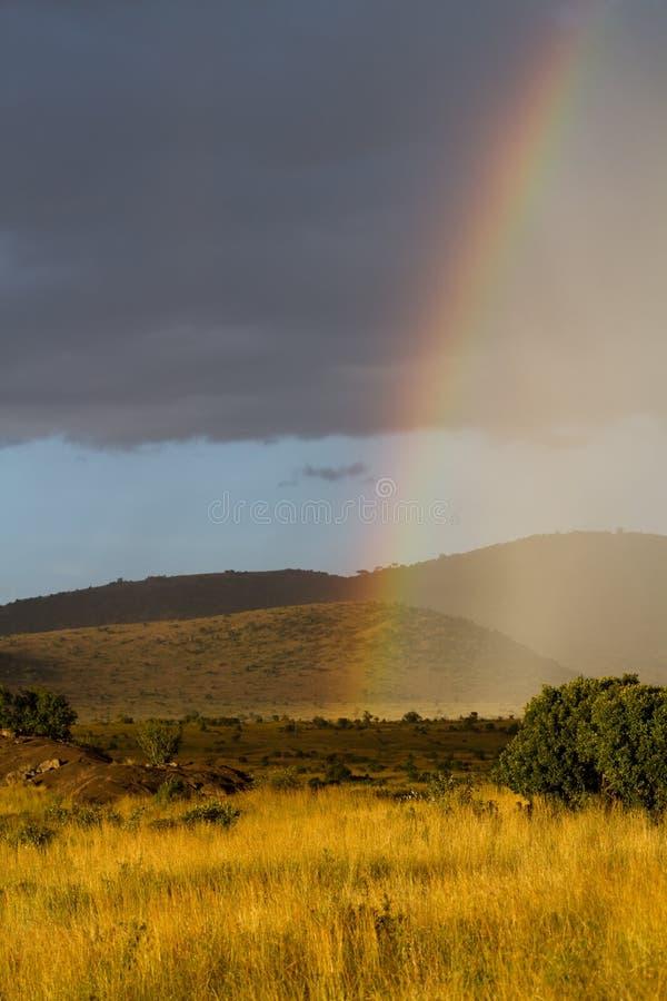 Arco-íris de mara do Masai fotos de stock