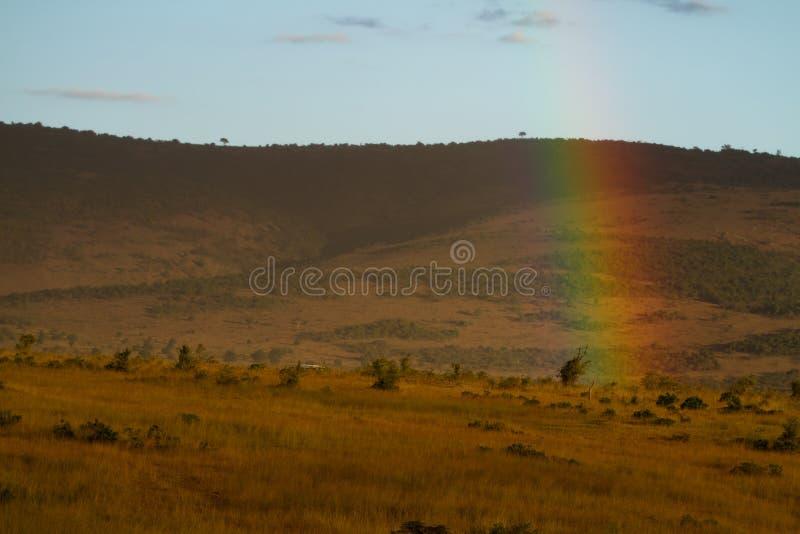 Arco-íris de mara do Masai imagens de stock royalty free