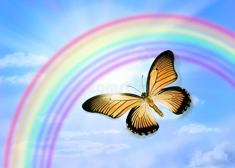 Arco-íris do céu da borboleta fotos de stock