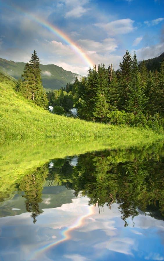 Arco-íris sobre a floresta imagens de stock royalty free