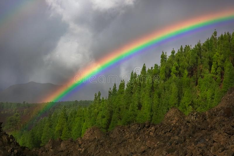 Arco-?ris sobre a floresta nas montanhas durante a chuva imagens de stock