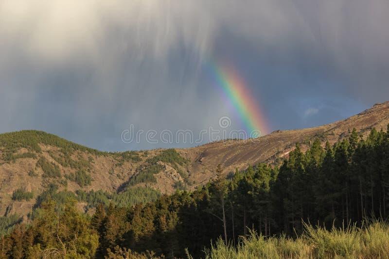 Arco-íris sobre a floresta, o fenômeno da natureza, rochas e árvores, cores brilhantes no arco-íris, chuva e céu nebuloso fotografia de stock