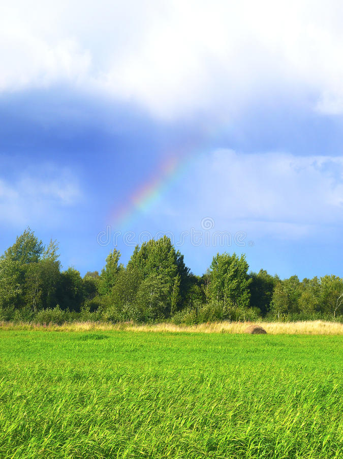 Arco-íris sobre a grama verde Sun e esqui azul Luz do sol após a chuva imagens de stock royalty free