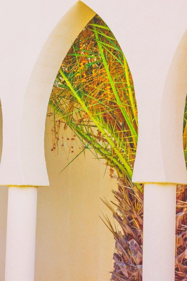 Arco arquitetónico do detalhe com as colunas da fazenda residencial mexicana típica da casa Luz solar brilhante da palmeira Vinta foto de stock