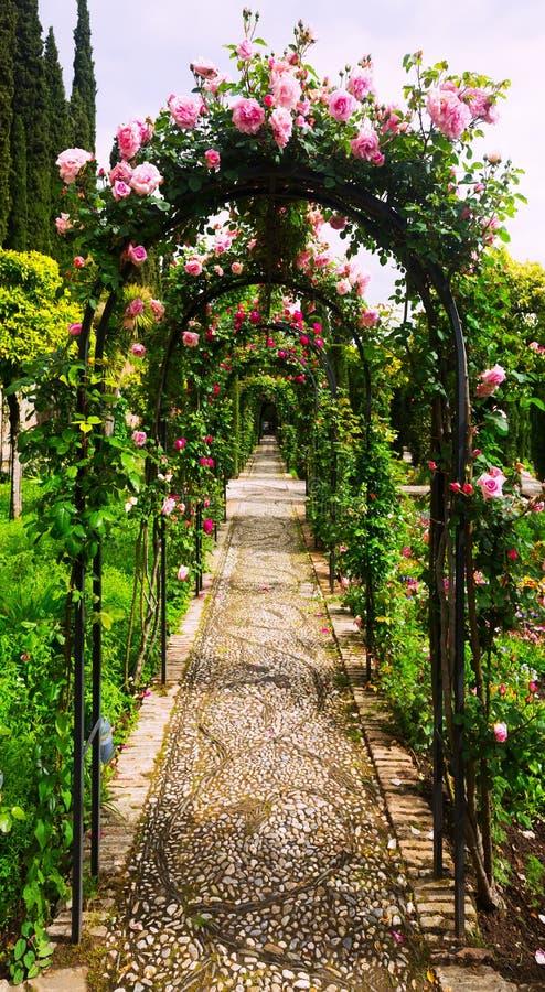 Arco con le rose al giardino di Generalife immagine stock