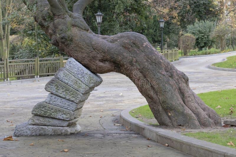 Arco de la madera y de las piedras de la retención imagen de archivo