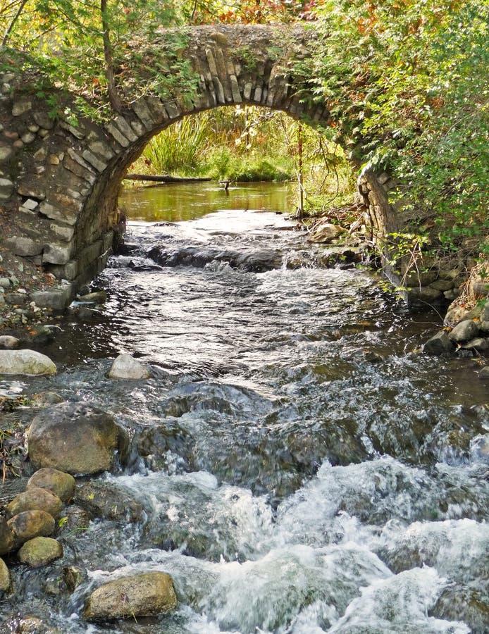 Download Arco De Pedra Sobre O Córrego De Pressa Imagem de Stock - Imagem de apressar, shrubs: 12806561