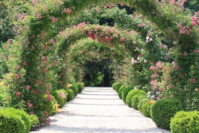 Arco de Rosa no jardim imagens de stock