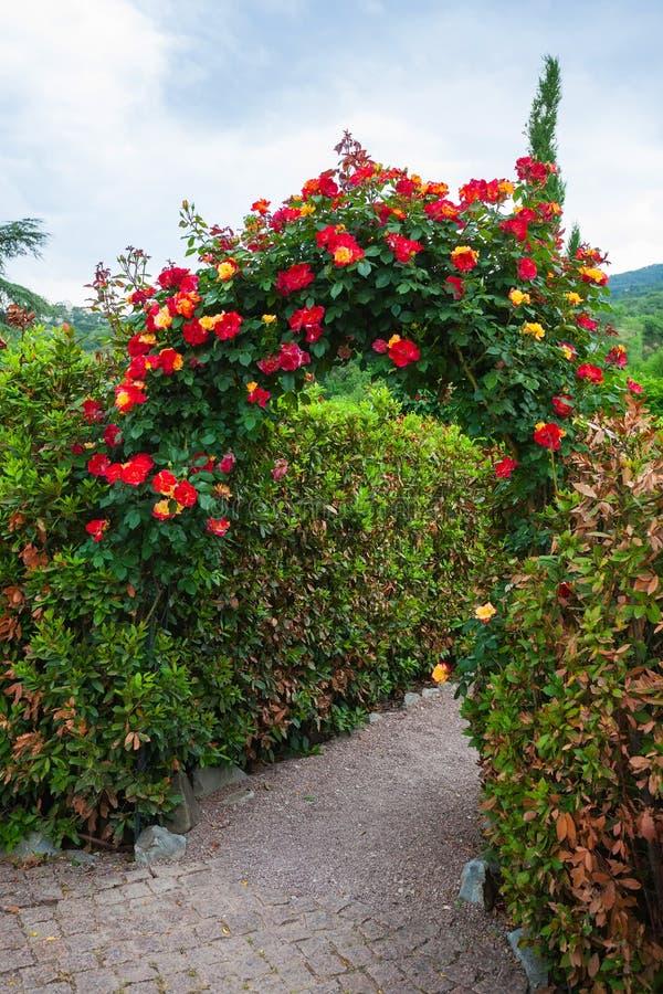 Arco de Rosa no jardim inglês do país imagens de stock royalty free