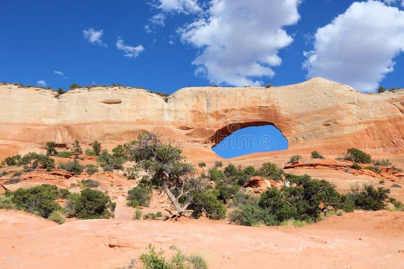 Arco de Wilson, Utá imagens de stock royalty free