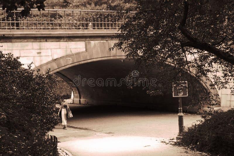 Arco del Central Park fotografia stock libera da diritti