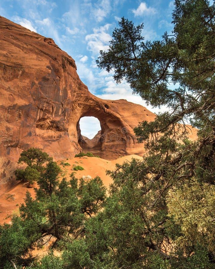 Arco del deserto con gli alberi e le nuvole immagine stock libera da diritti