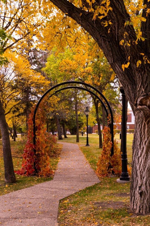 Arco del jardín en otoño foto de archivo libre de regalías