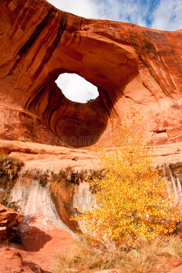 Arco della buca di Bowtie fotografia stock