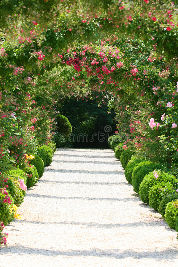 Arco della Rosa nel giardino fotografie stock libere da diritti
