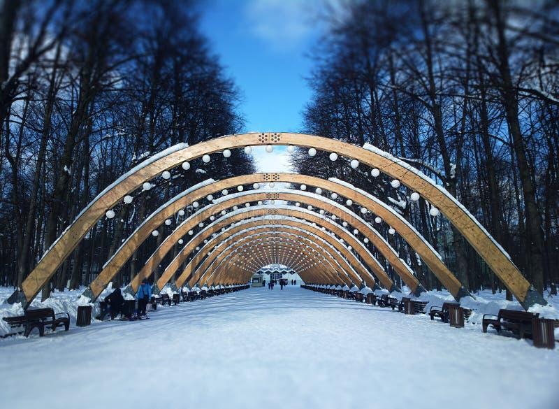 Arco di illuminazione nel fondo del parco di Mosca Sokolniki fotografia stock