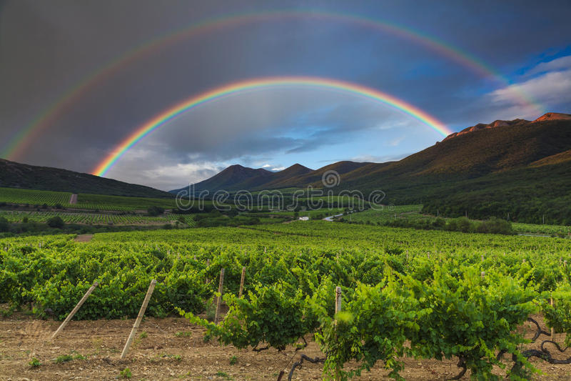 Arco iris dobles sobre un viñedo en Francia imagen de archivo