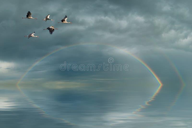 Arco iris y grúas imagenes de archivo