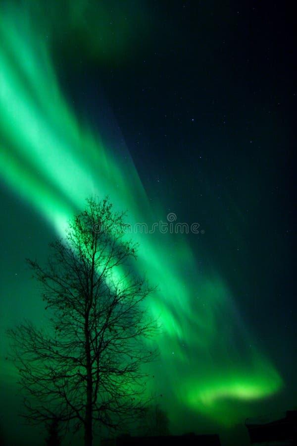 Arco vibrante de la aurora foto de archivo