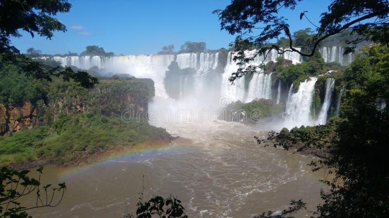 Arcobaleno e vegetazione nel parco nazionale delle cascate di Iguazu fotografie stock libere da diritti