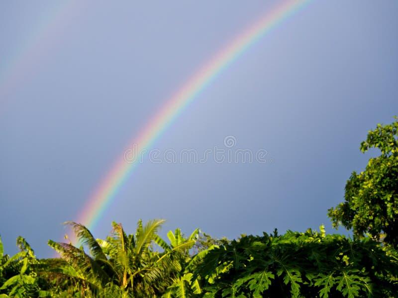 Arcobaleno sopra il tetto fotografia stock libera da diritti