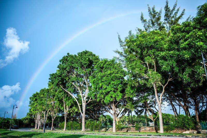 Arcos-íris na praia foto de stock royalty free