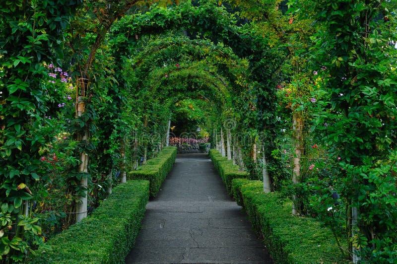 Arcos y camino de la rosaleda imágenes de archivo libres de regalías