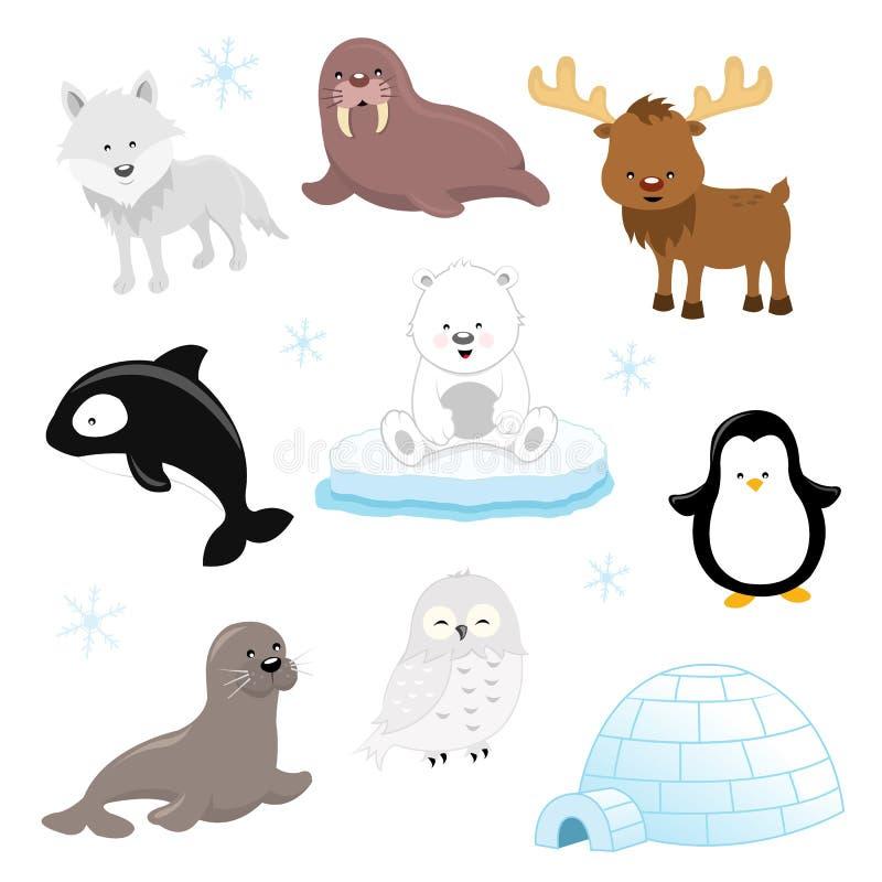 Free Arctic Animal Set Stock Photography - 63726892