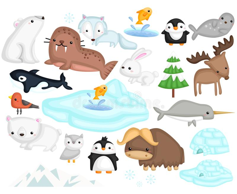 Arctic animal vector set stock illustration